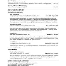 format personal resume samples tasty personal resume templates