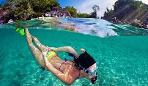 Pattaya snorkeling scuba diving one day tour trazy your