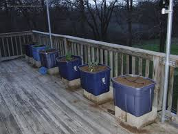 backyard starting container vegetable garden deck gardendeck