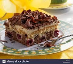 thuringian snow white cake chocolate cherry cake stock photo