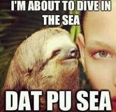 Sloth Whisper Meme - www straycrayons com funny humor adult gore meme photoshop
