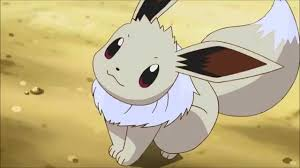 liam u0027s eevee the pokemon roleplay wiki fandom powered by wikia