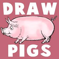 how to draw cartoon hogs and pigs in simple to follow steps how