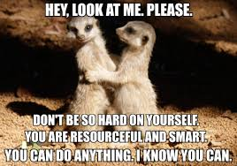 Hang In There Meme - matthew gordon books image macros replace the old hang in there