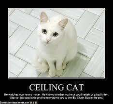 Ceiling Cat Meme - ceiling kitty theteenline org