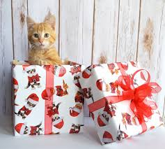 cat christmas wrapping paper 4 days until christmas and we feature some trendy gift wrapping paper
