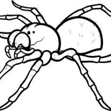 camel spider coloring kids drawing coloring pages