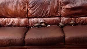 raviver un canapé en cuir l instant pratique l argile et l œuf pour nettoyer vos canapés