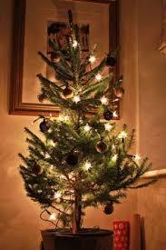 How To Make Christmas Lights Twinkle How To Make Your Christmas Lights Twinkle In Photos Christmas