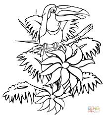 preschool jungle coloring pages rainforest coloring page free printable coloring pages