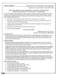 Example Of Resume Format by Sample Resume Sales Marketing Manager
