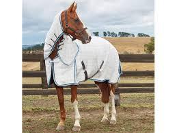 Weatherbeeta Combo Stable Rug Weatherbeeta Summer Sheet Cotton Combo Horselands