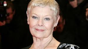 judi dench hairstyle front and back of head why dame judi dench is having the time of her life