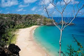 baia do sancho the most beautiful beach in the world