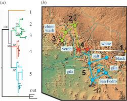 Plateau Of Mexico Map by Anthropogenic Impacts Drive Niche And Conservation Metrics Of A