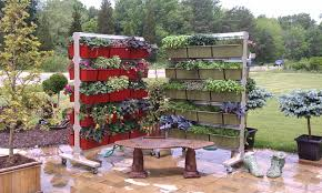 Vertical Gardening by 3 Important Guidelines For Vertical Gardening