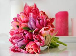 Flower Alt Code - flower pictures images photos