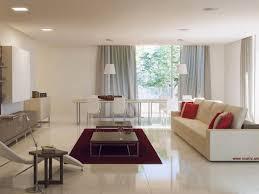 small apartment condominium interior design astonishing living