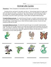 animal worksheets have fun teaching