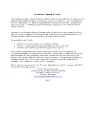 free sample auditor resume interpersonal communication research