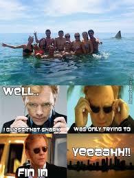 Miami Memes - csi miami memes best collection of funny csi miami pictures