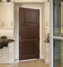 Kitchen Interior Doors Door Idea Gallery Door Designs Doors