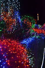 outlaw gardener on seventh day christmas zoo lights