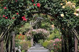 New Zealand Botanical Gardens Garden In The Botanic Gardens Canterbury South Island