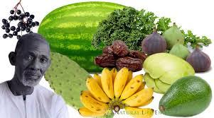 dr sebi nutritional guide mucus reducing alkaline diet