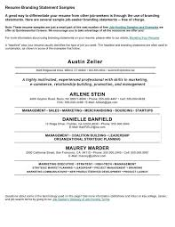 Resume Statements Examples by Best 20 Personal Brand Statement Examples Ideas On Pinterest
