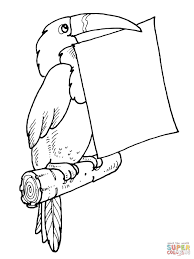 toucan holds a letter in its bill coloring page free printable