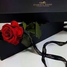 gallery u2013 eternal roses