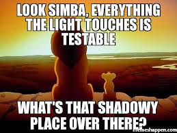 Lion King Meme - look simba everything the light touches is testable what s that