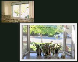 Kitchen Garden Window My Crowded Kitchen Windowsill U2013 Gardening Nirvana