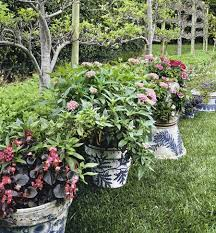 Container Gardening Ideas Container Garden Ideas