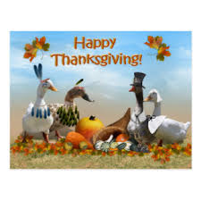 thanksgiving duck cards invitations greeting photo cards zazzle