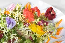 Edible Flowers Luxurious Garnish Edible Flowers In Food Eat Love Savor