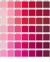 Pink Color Scheme Best 25 Pink Color Chart Ideas On Pinterest Salmon Pink Color