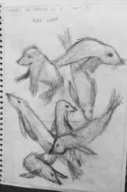 24 best zoo drawings year 7 2013 images on pinterest year 7