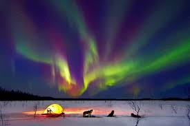 lights of the world address get mesmerized with the northern lights of alaska found the world