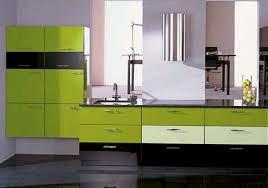 modern european green kitchen design