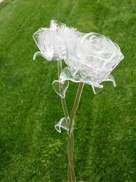 glass roses bcmhkzb jpg 720 960 glass roses