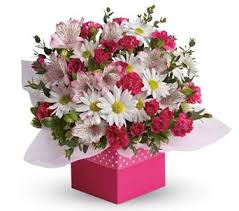 Birthday Flowers Delivery Petals Com Au Polka Dot