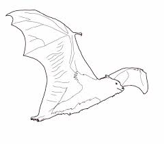 Halloween Coloring Pages Bats by Free Coloring Page Bat