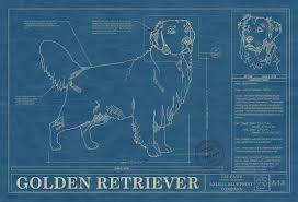 home page animal blueprint company our prints are drawn the exact characteristics your favorite animal