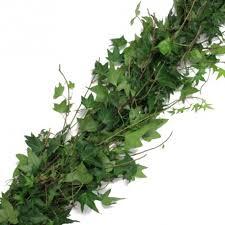 green garland price per foot florasource