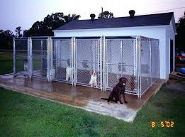 dog barn best outdoor dog house accentapp co