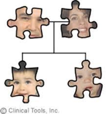 Inheritance puzzle