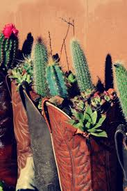 Cactus Planters by Daily San Franciscan Cowboy Boot Cactus Planters