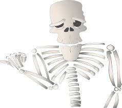 halloween cartoon skeleton clipart cartoon skeleton